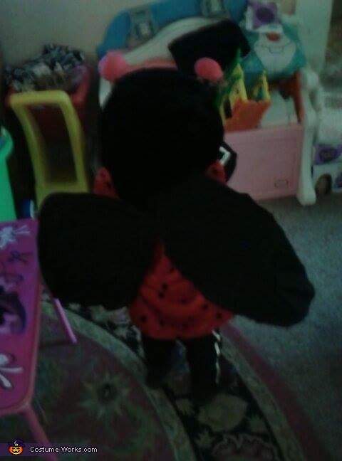 backview of the wings, Ladybug Baby Costume