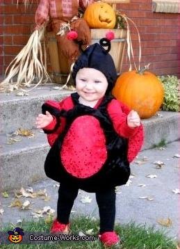 Lil Ladybug Costume