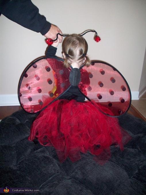 Back View, Ladybug Baby Costume