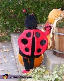 Ladybug Baby Costume