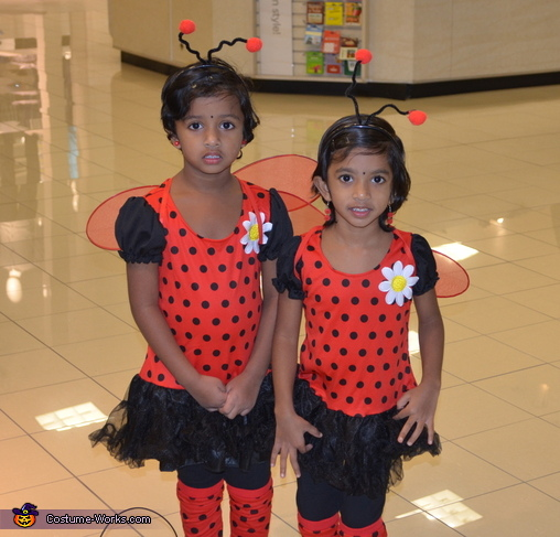 Twin Day Costume Ideas http://www.costume-works.com/ladybugs.html