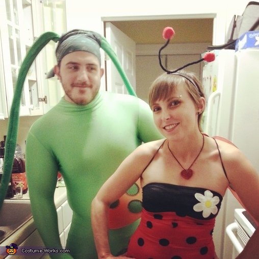 Ladybug and Aphid Costume