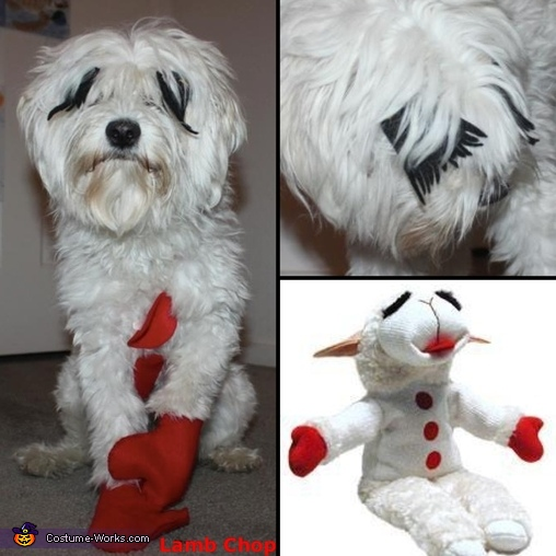 Lamb Chop Dog Costume