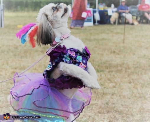 mardi gras dogs costume, Las Vegas Showgirl Costume