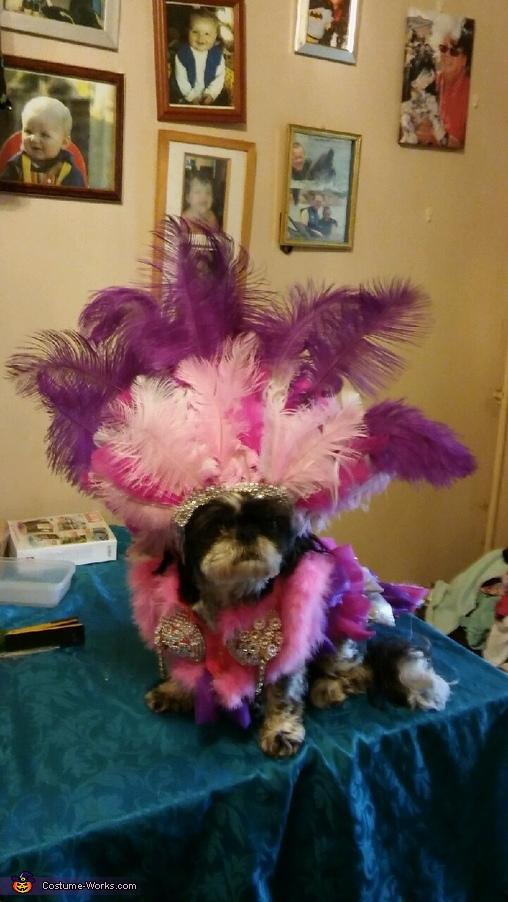 Las Vegas Showgirl Costume