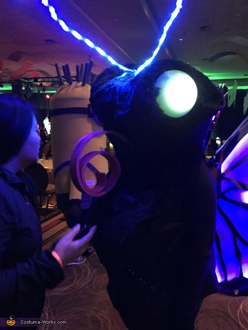 LED Butterfly Homemade Costume