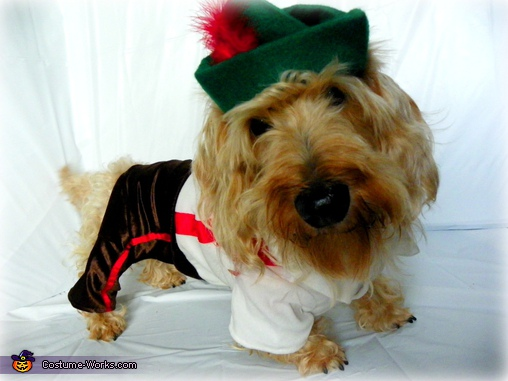 Lederhosen Doxie Boy, Winston!.  - Homemade costumes for pets