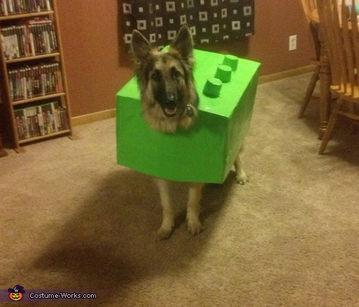 Lego Dog Homemade Costume