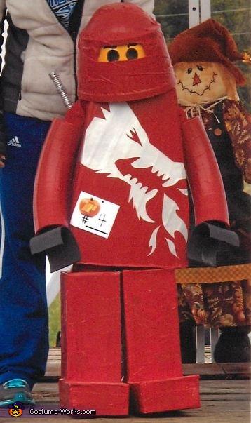 Lego Ninjago Costume