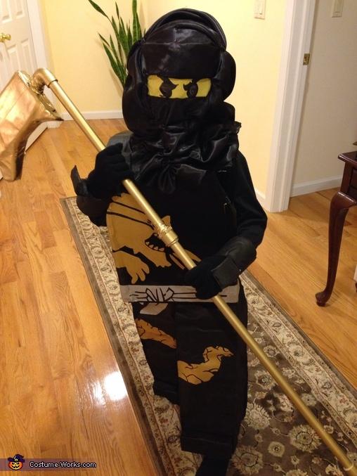 Lego Ninjago Cole Costume