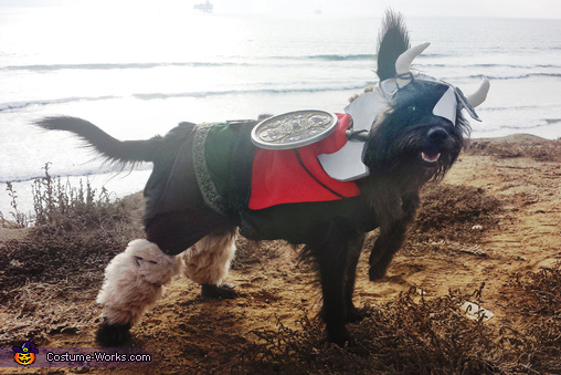 Murdock as Leif Erikkson the Viking at the beach, Leif Eriksson the Viking Costume