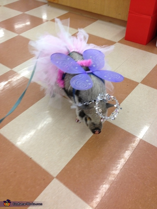 Leroy the Angel Pig Costume