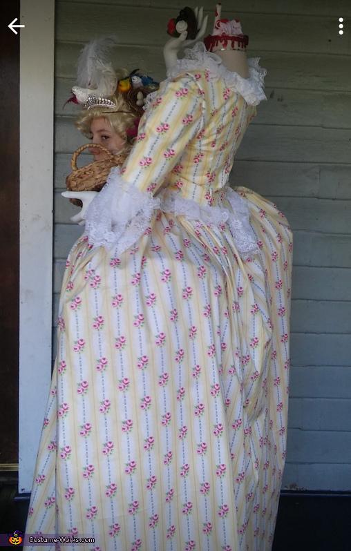 Marie Antionette Homemade Costume