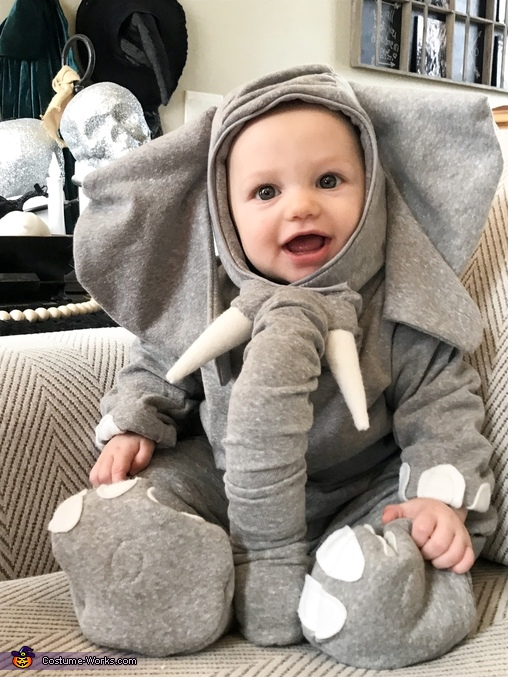 Elephant Costume  sc 1 st  Costume Works & Liam the Elephant | Baby Elephant Costume