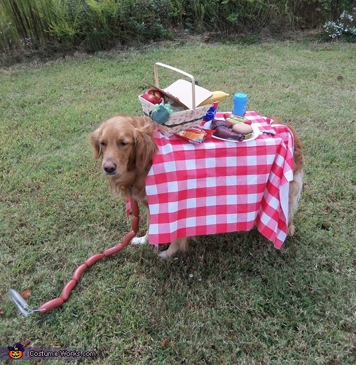 Life is a Picnic Costume