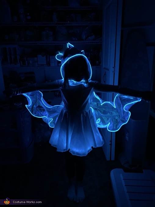 Light Fury Costume