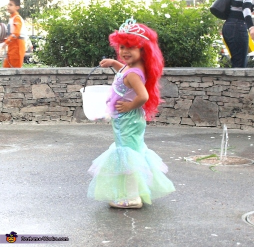 Mermaid Ariel & Sebastian Costume