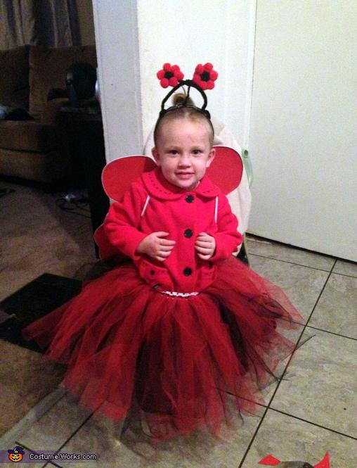 Lil Miss Ladybug Costume