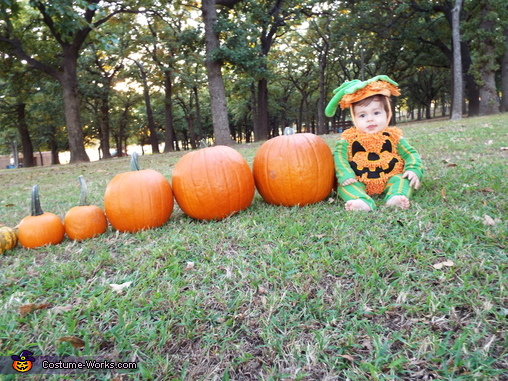 Cutest pumpkin in the patch, Cutest Lil Pumpkin Costume