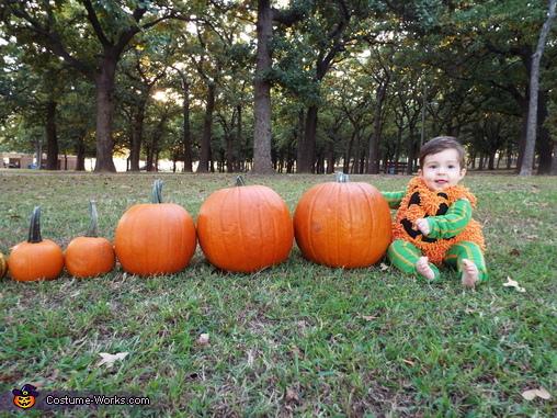 Lost my hat, Cutest Lil Pumpkin Costume