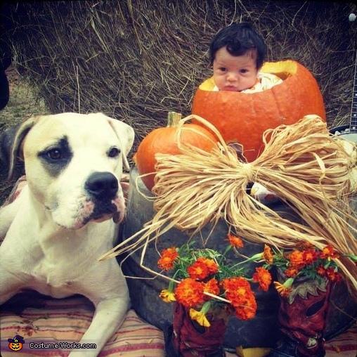 Lil Pumpkin Baby Costume