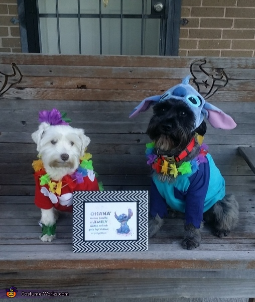 Lilo & Stitch Costume