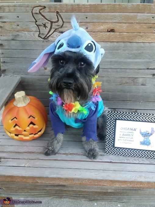Lilo & Stitch Dogs Homemade Costume