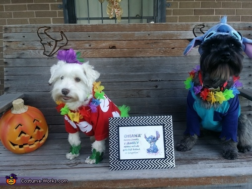 Lilo & Stitch Dogs Homemade Costume