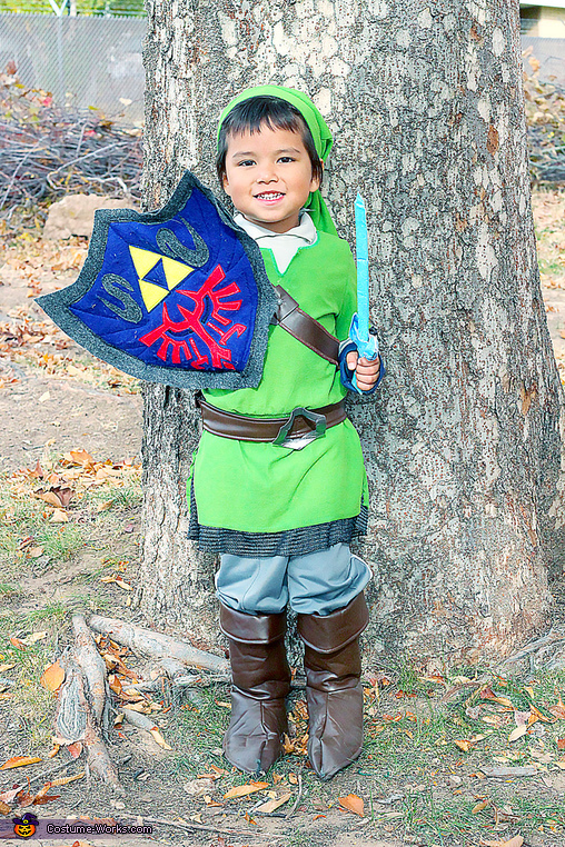 Link showing off his shield, Link and Zelda from Skyward Sword Costume