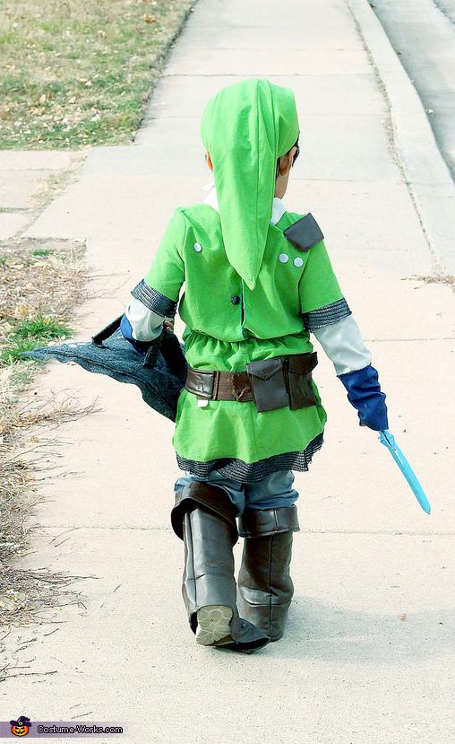 Epic Link, Link and Zelda from Skyward Sword Costume