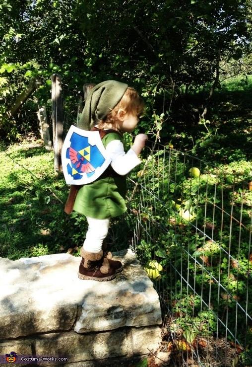 Peeking over fences., The Legend of Zelda Link Costume