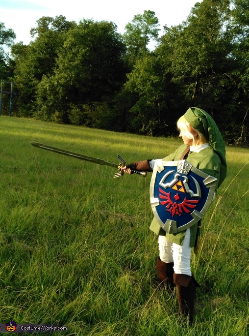 Link from The Legend of Zelda Costume