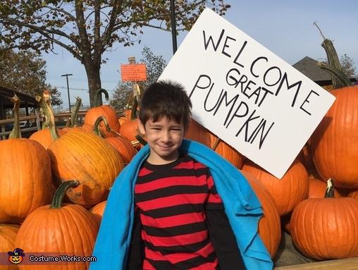 Linus Costume