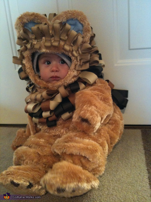 Carson as a lion (tame of coarse),  Lion Costume