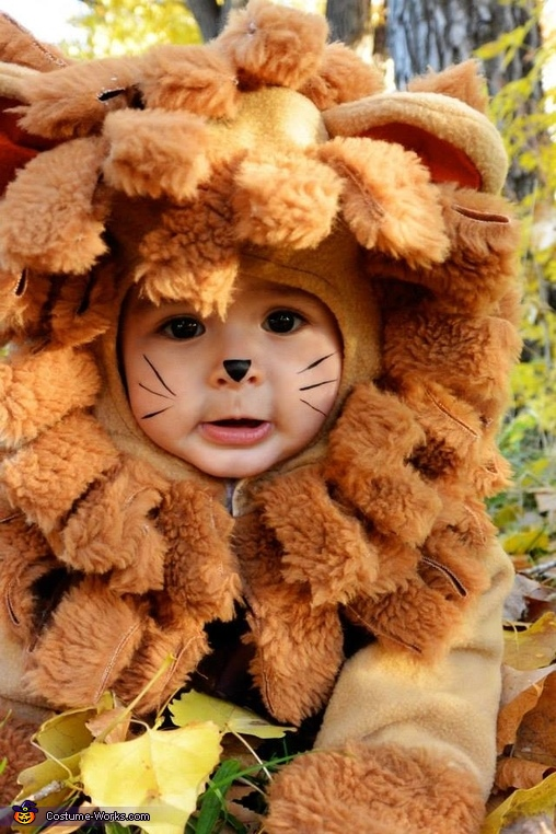 Lion From Wizard Of Oz Baby Halloween Costume Photo 2 2