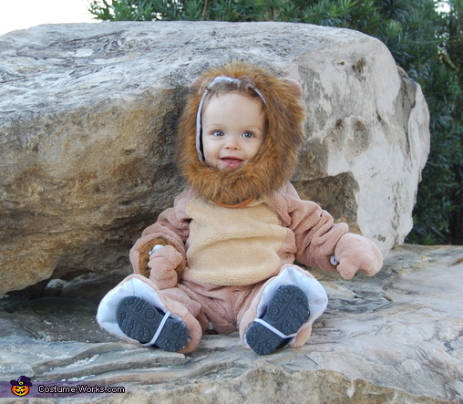 Little Lion Man, Lion Tamer Family Costume