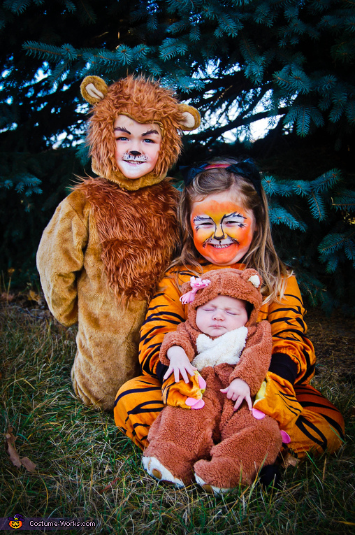 Lion, Tiger & Bear Costume