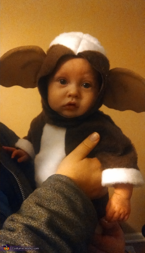 Lil' Gizmo Baby Costume