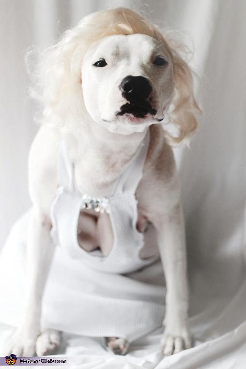 Lita Monroe Costume