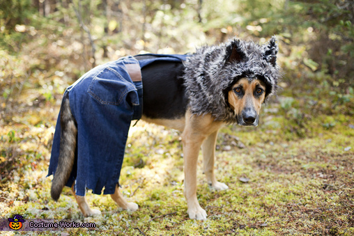 Protector of the back 40, LIttle Bad Wolf Costume