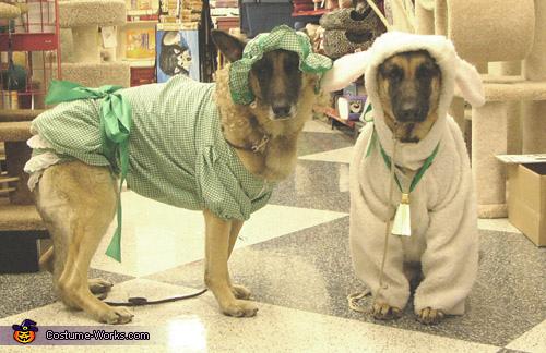 Little Bo Peep and Sheep Costume