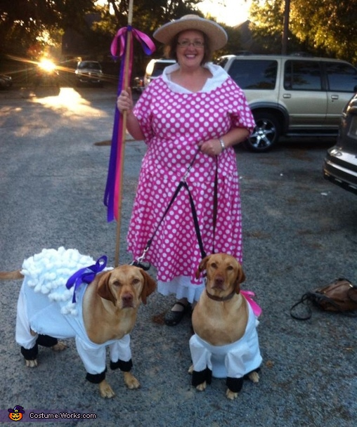 Bo peep and sheep  photo op, Little Bo Peep and Sheep Costume