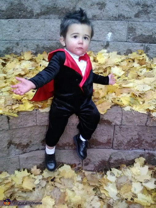 Little Count Dracula Costume