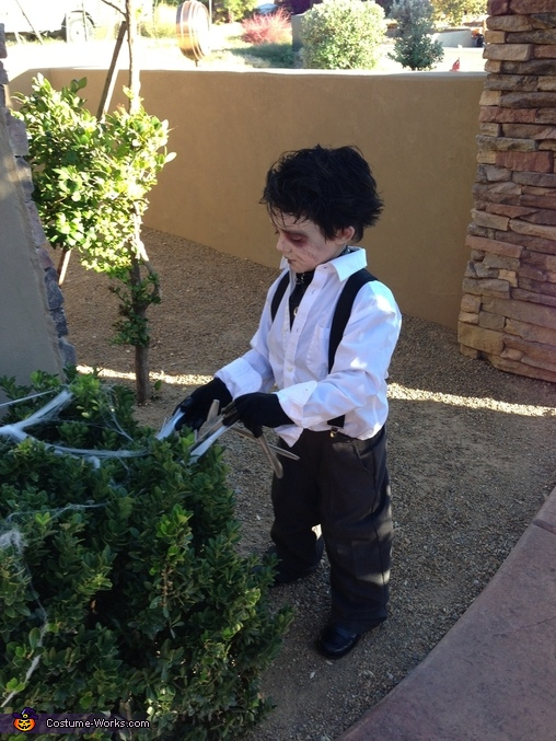 Trimming the hedges, Little Edward Scissorhands Costume