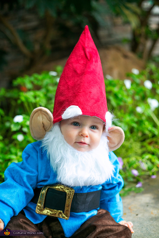 Look who I found wandering the garden!, Little Garden Gnome Costume