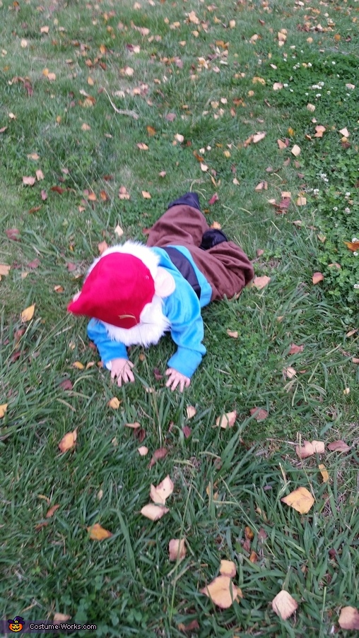 Gnome Down!, Little Garden Gnome Costume