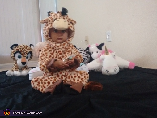 Little Giraffe with his friends, Little Giraffe Costume