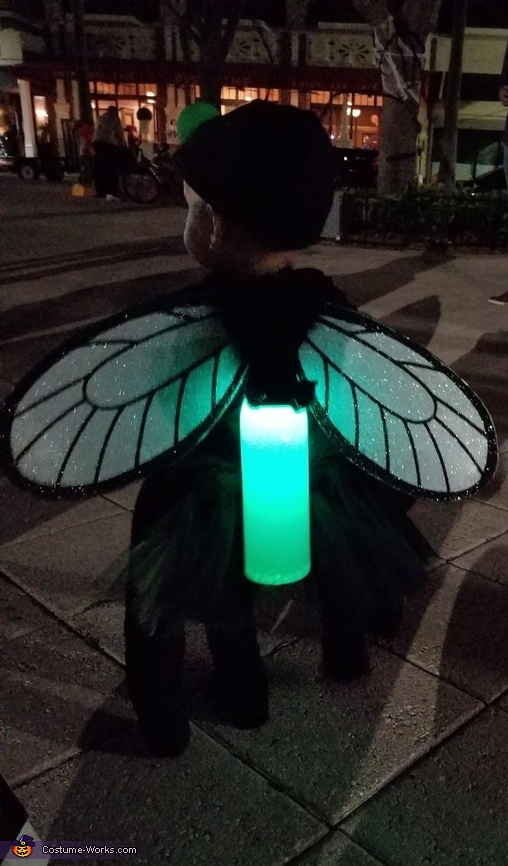 Little Girl Catching Lightning Bugs in a Jar Homemade Costume