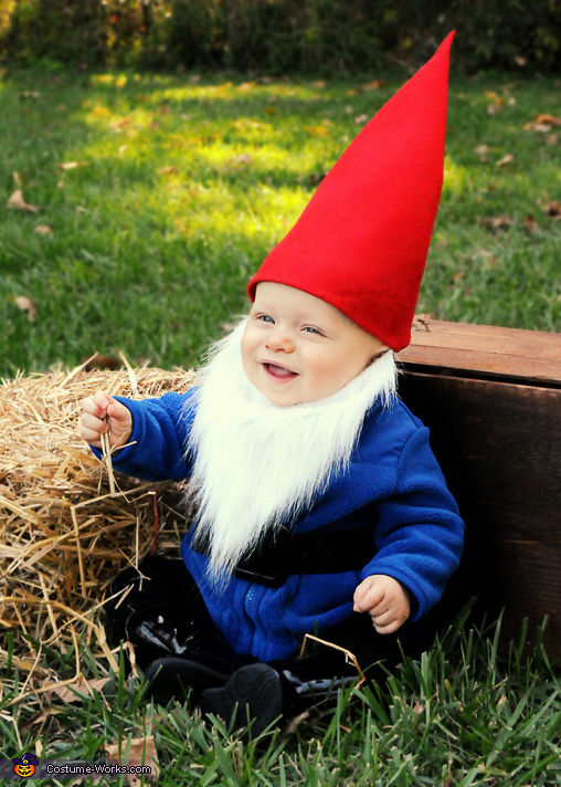 Costume ideas for babyu0027s first Halloween - Little Gnome Costume  sc 1 st  Costume Works & 21 Easy Homemade Costumes for Babyu0027s First Halloween