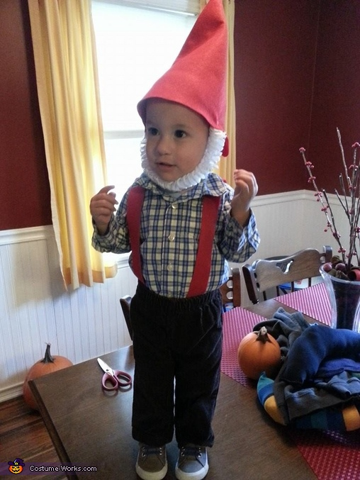 Little Gnome Costume